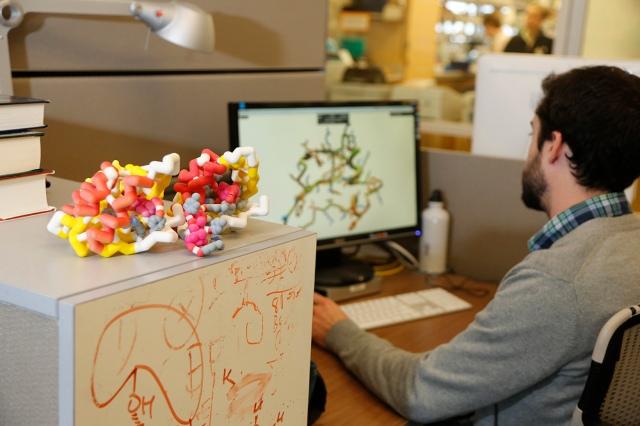 Image: Protein design