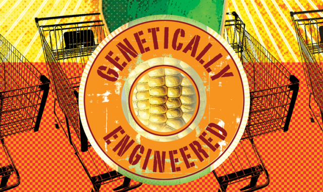 Image: Genetically engineered crops
