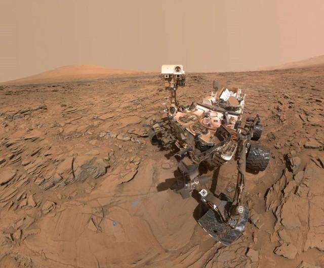 Image: Curiosity selfie