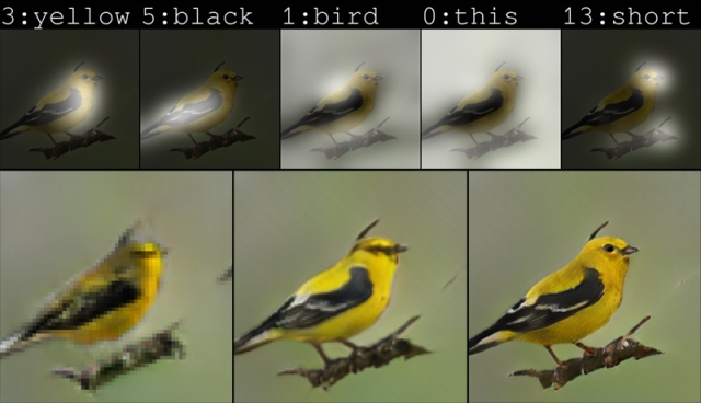 Bird drawn by AI