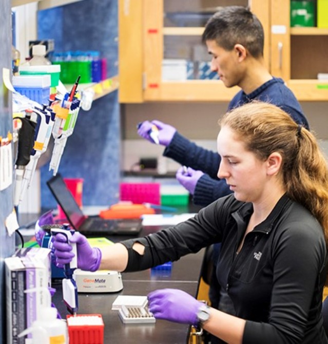DNA data storage experiment