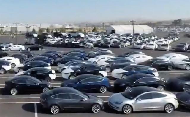 Teslas in lot