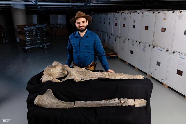 Carlos Peredo with fossils